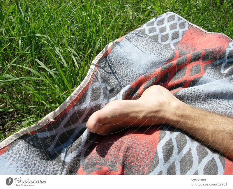 Human being Sun Summer Life Relaxation Meadow Emotions Feet Trip Blanket Limbs