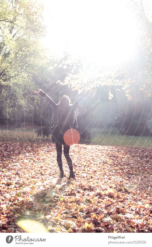 Human being Youth (Young adults) Tree Young woman 18 - 30 years Adults Feminine Freedom Park Dance Warm-heartedness Point Autumn leaves Lens flare