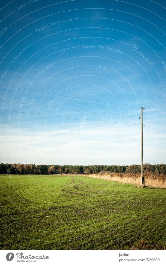 diversion. Telecommunications Energy industry Sky Autumn Beautiful weather Grass Field Lanes & trails Line Blue Horizon Far-off places Curve Electricity pylon