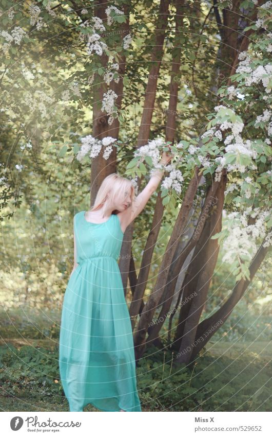Human being Youth (Young adults) Beautiful Green Summer Tree Young woman Calm Leaf 18 - 30 years Forest Adults Eroticism Feminine Emotions Spring