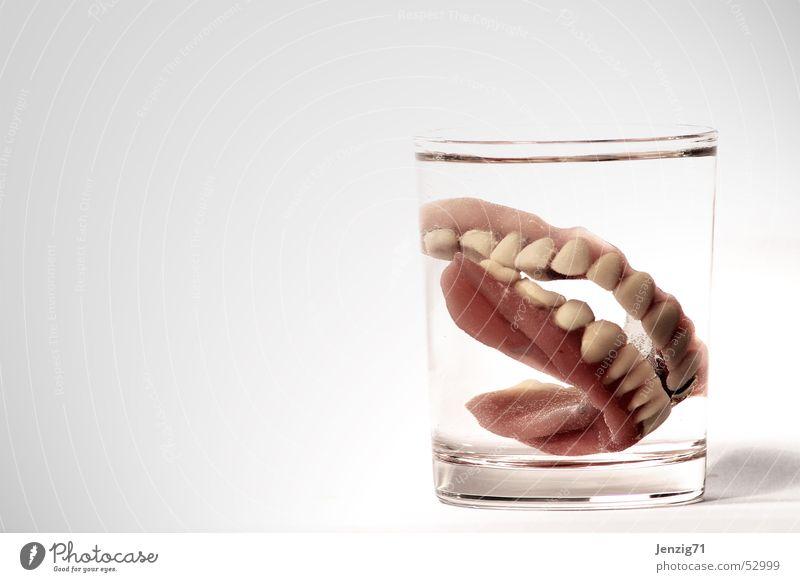 Nutrition Glass Teeth Dentist Bite Dentistry Tumbler Third Prothesis Dental implant Dental technology Dental technician