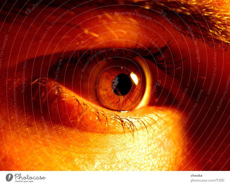 Man Eyes Fear Pupil