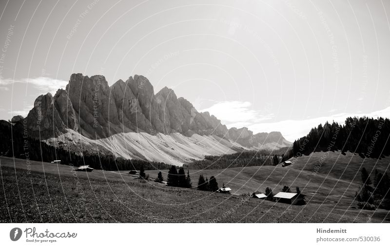 majesty Summer Summer vacation Environment Nature Sky Clouds Beautiful weather Meadow Forest Hill Rock Alps Mountain Peak Alpine pasture Dolomites