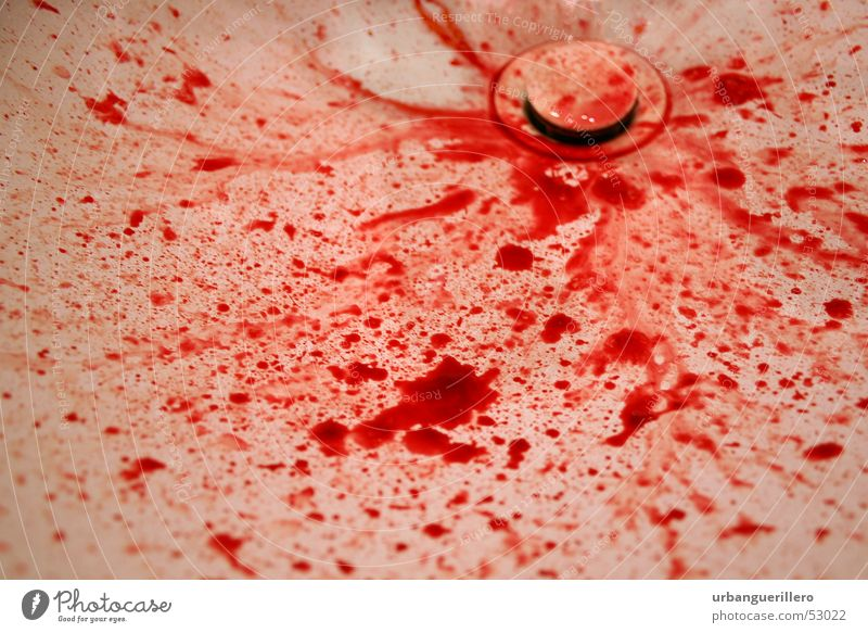 blood Sink Blood lust Bloodthirsty Red Kill Murder Force Death Blood smear Blood stain Crime scene Drainage