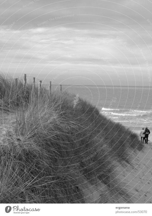 dune walk Ocean Lovers Grass Beach Belgium Beach dune Couple Sky Black & white photo In pairs
