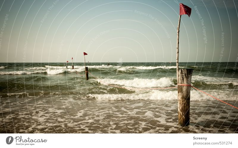 Shared surf Vacation & Travel Tourism Summer Beach Ocean Island Waves Swimming & Bathing Nature Plant Water Sky Cloudless sky Coast North Sea Juist island Flag