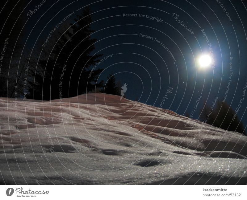 Sister Moon Night Full  moon White Fir tree Night shot Long exposure Hill Switzerland Canton Graubünden Winter Snow Landscape Lamp Glittering Mountain