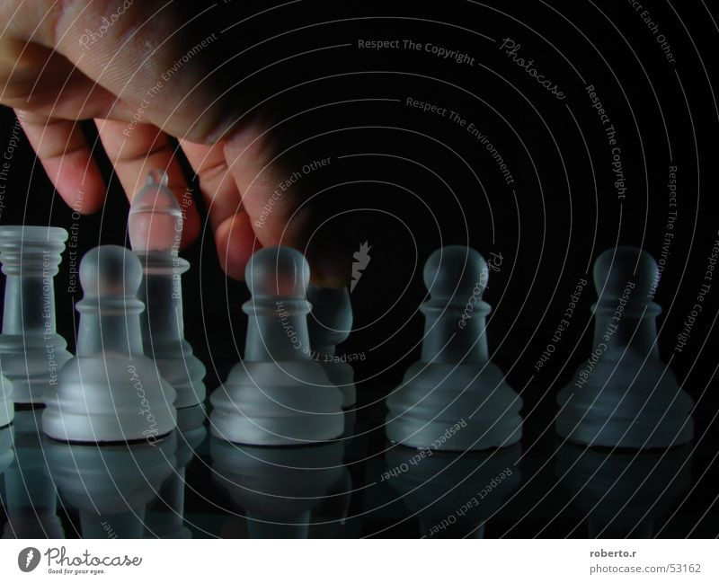 Hand White Black King Chess Chess piece