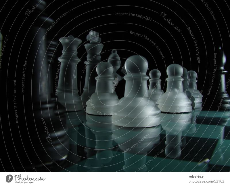 White Black King Chessboard