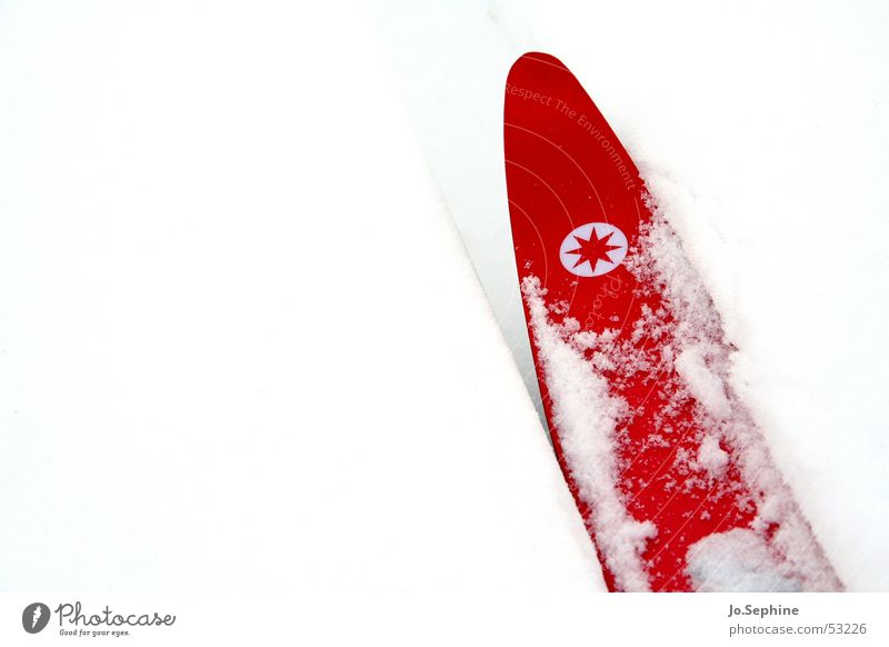 Red on White I Leisure and hobbies Cross country skiing Skiing Skis Winter sports Sports Winter vacation Snow chill Seasons Frost Colour photo