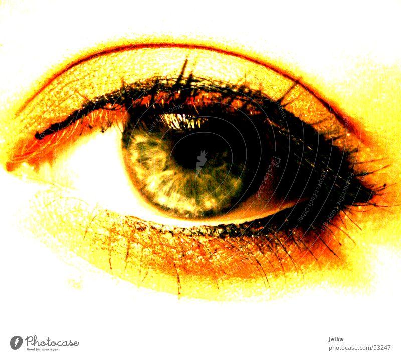 a feast for the eyes Make-up Mascara Eyes Green Eyelash Wearing makeup Colour photo Women's eyes Pupil Yellow Gold 1 Eyeliner Close-up Detail Eye colour