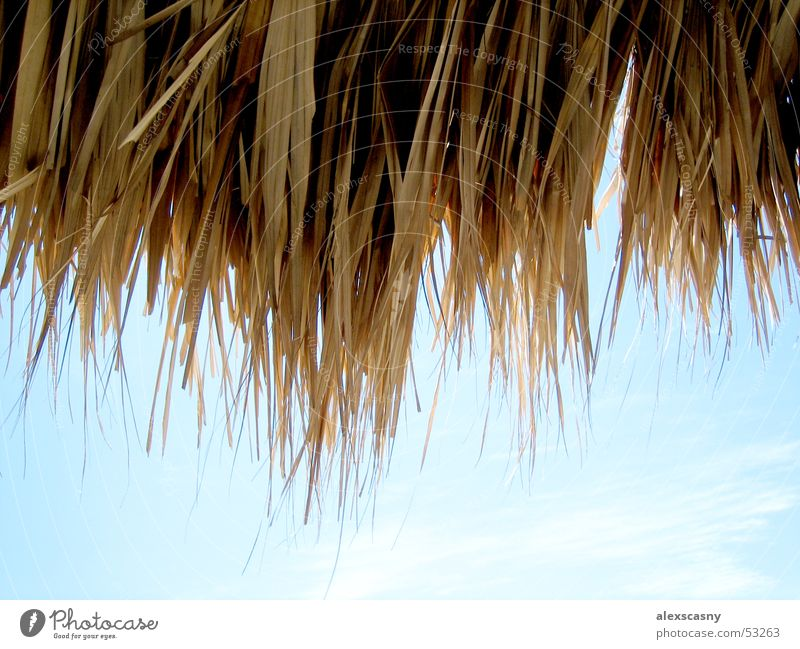 thatched roof Clouds Beautiful weather Thatched roof Venezuela Blue sky Cuba