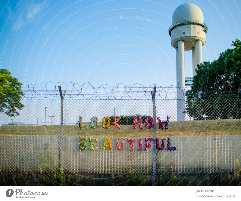 LOOK here! Beautiful Summer Tree Animal Warmth Happy Park Signage Creativity Beautiful weather Joie de vivre (Vitality) Tower Mysterious Fence Cloudless sky