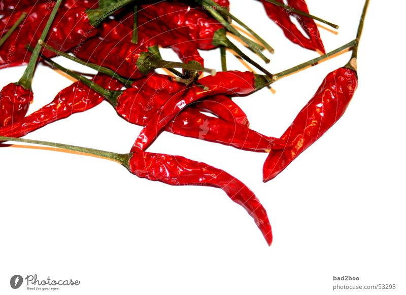 Plant Red Food Nutrition Tangy To enjoy Herbs and spices Burn Bite Chili Vegetable Spicy Fiery Husk