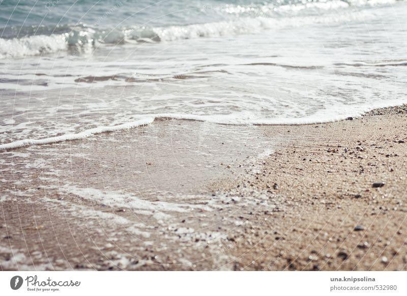 log a wön Vacation & Travel Summer vacation Beach Ocean Waves Environment Water Coast Fluid Fresh Cold Maritime Wet Sandy beach Refrigeration Colour photo