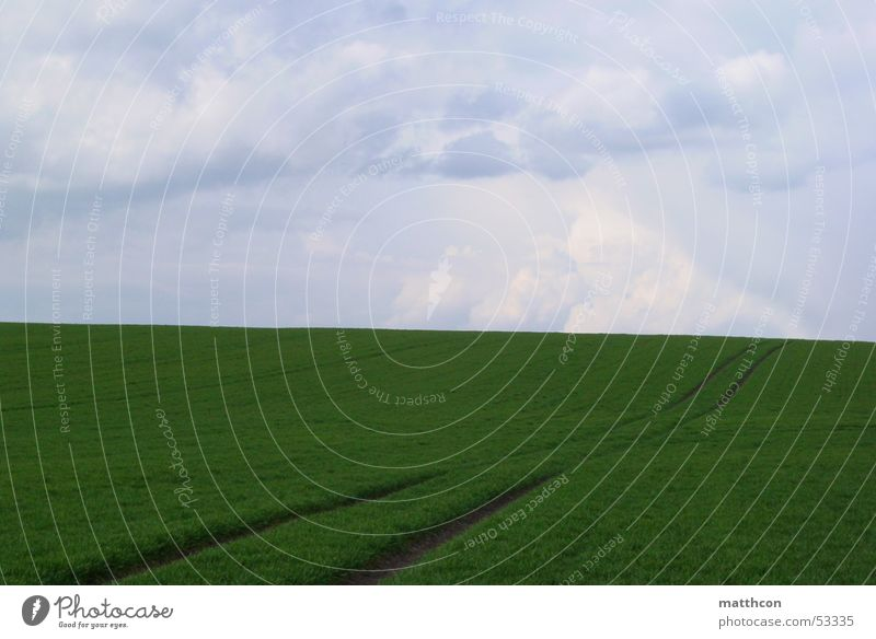 Jump Spring Lanes & trails Landscape Field Grain Isserstedt
