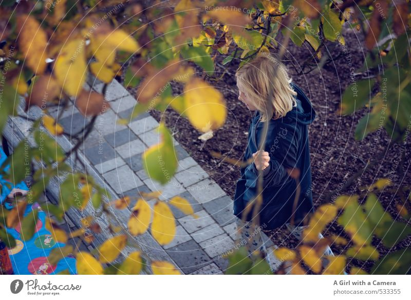 through Human being Feminine Girl Infancy 1 3 - 8 years Child Autumn Leaf Playing Garden Terrace Blonde Under Hide Action Nature Joy Multicoloured Exterior shot