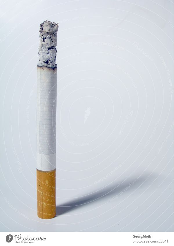 Brown Poverty Transience Smoking Cigarette Burn Glow Fuse Noxious Bright background