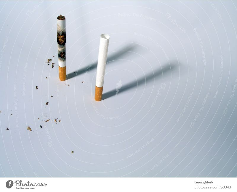 Brown 2 Poverty Empty Transience Cigarette Burn Bright background