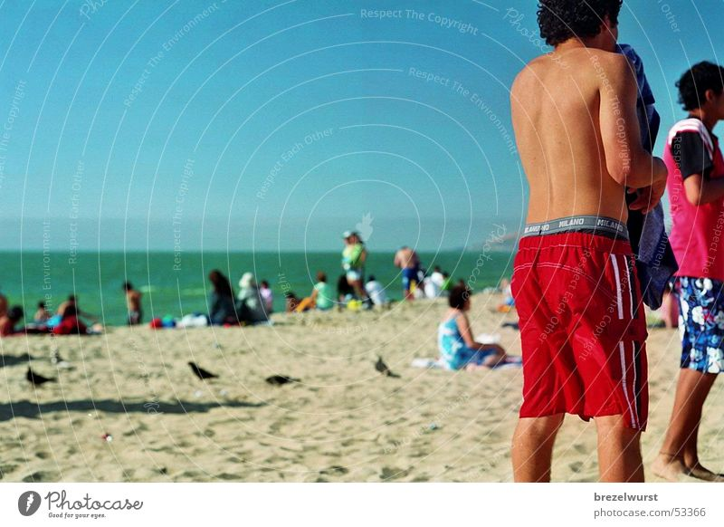 Human being Water Sky Ocean Green Blue Summer Beach Vacation & Travel Sand Hind quarters Tracks Swimming & Bathing Seagull Tourist Shorts