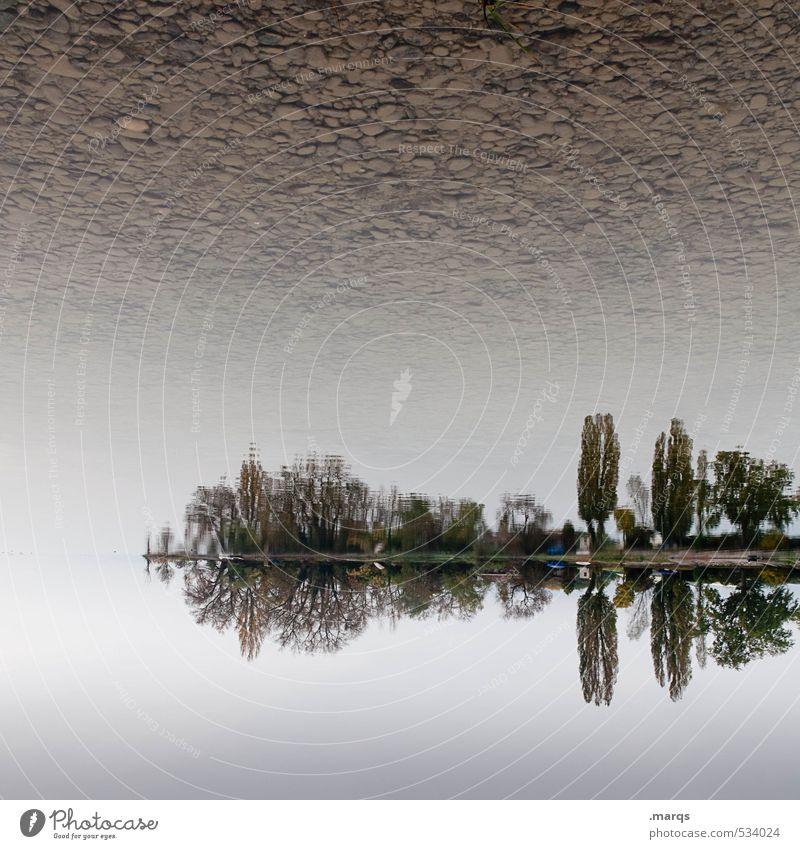 Landunter Elegant Vacation & Travel Tourism Trip Adventure Environment Nature Landscape Sky Horizon Autumn Climate Tree Bushes Park Lake Lake Constance