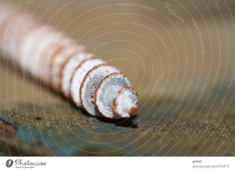 Blue Gray Point Rust Garage Spiral Screw Rotation Drill Workbench Screw thread