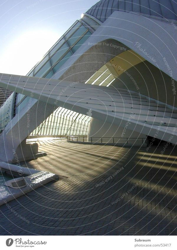 calatrava Concrete Drop shadow Light Shadow play Valencia Spain Art Science & Research Exterior shot Architecture Modern Cinema Theatre Museum