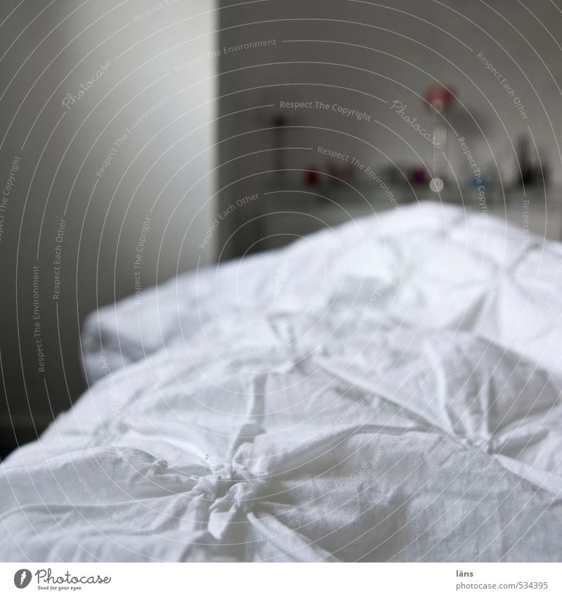 Good morning Living or residing Flat (apartment) Bedroom Bedclothes Duvet Colour photo Interior shot