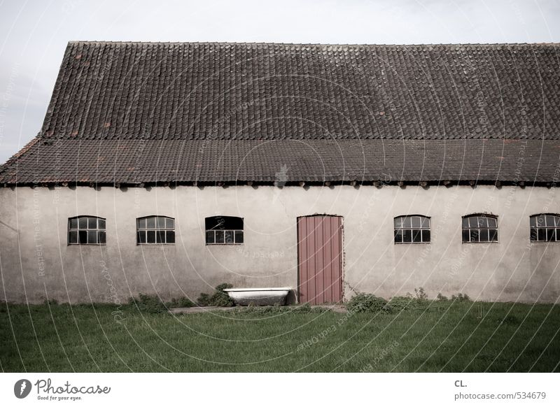 the farmer's farm Environment Nature Landscape Grass Meadow Field Deserted House (Residential Structure) Building Wall (barrier) Wall (building) Window Door