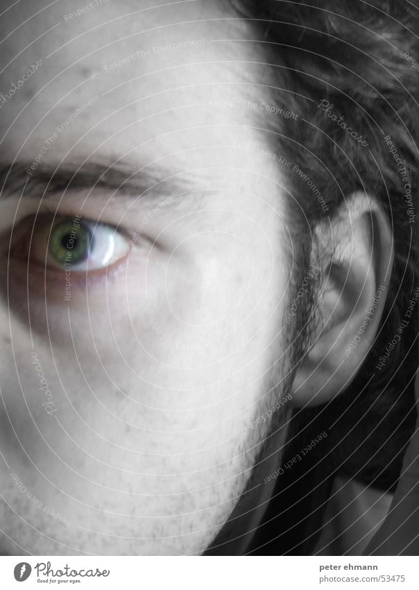 Green Face Eyes Style Sadness Fear Perspective Ear Stress Muddled Half Haste Irritation Aggravation Eyebrow Horror