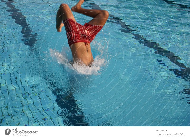 Jump into the cool water Joy Summer Swimming pool Man Adults Water Wet Blue Headfirst dive Colour photo Exterior shot Morning Refreshment Swimming & Bathing