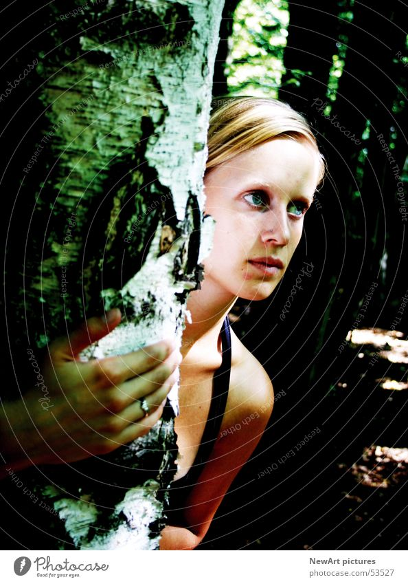 Woman Nature Hand Tree Forest Head Blonde Shoulder Federal State of Kärnten