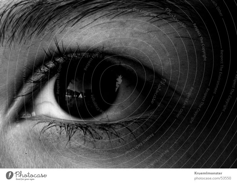black eye Pupil Eyelash Black Eyebrow Mysterious Eyes Black & white photo Vantage point Looking