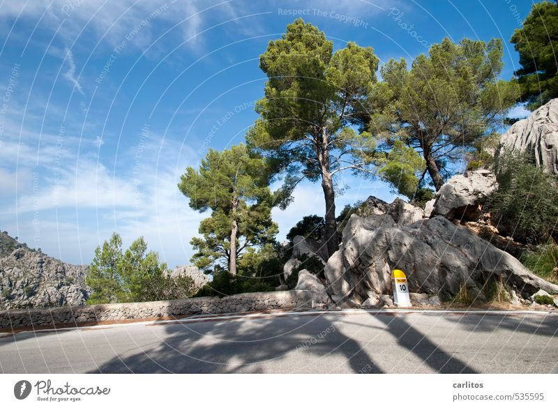 Kilometer 10 Environment Nature Landscape Plant Sky Beautiful weather Warmth Tree Rock Mountain Island Esthetic Stone pine Forest Blue Green Street Milestone