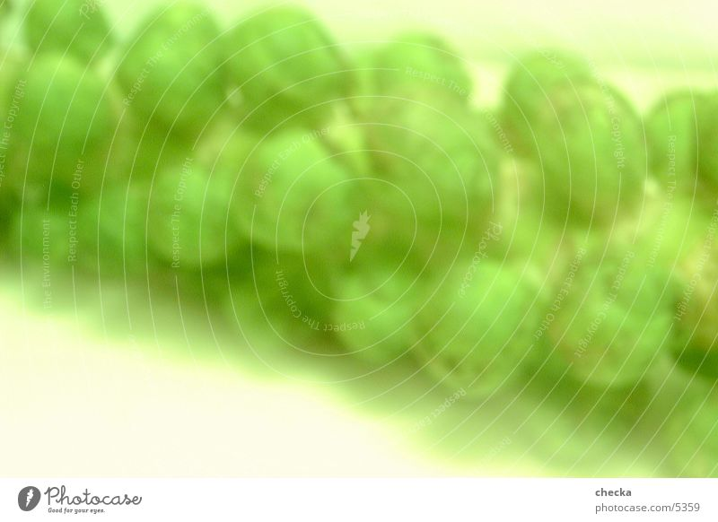 Green Background picture Fresh Vegetable Photographic technology