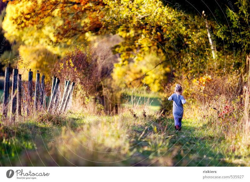 Human being Child Nature Relaxation Landscape Girl Forest Environment Meadow Feminine Autumn Natural Going Park Field Infancy