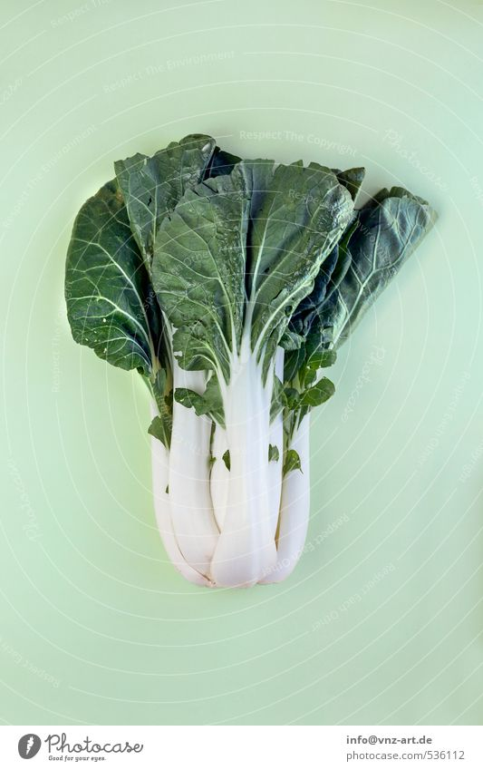 Modern_Vegetable_06 Graphic Art Concepts &  Topics Design Cooking Kitchen Plant Exotic Interesting Colour Composing Arranged Arrangement Cabbage Chinese cabbage