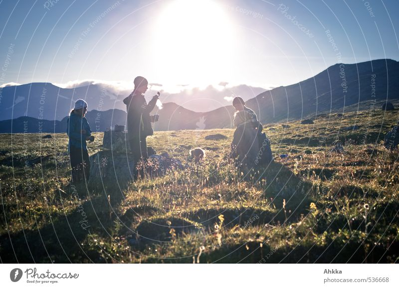 Human being Nature Youth (Young adults) Summer Sun Landscape Joy Mountain Life Spring Meadow Healthy Happy Group Freedom Moody