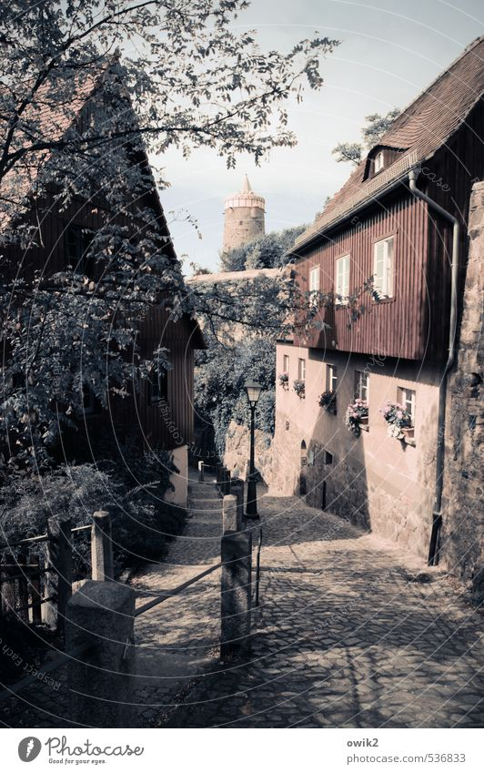 Sky Old Tree Leaf House (Residential Structure) Window Wall (building) Spring Wall (barrier) Wood Stone Germany Facade Idyll Tower Tilt