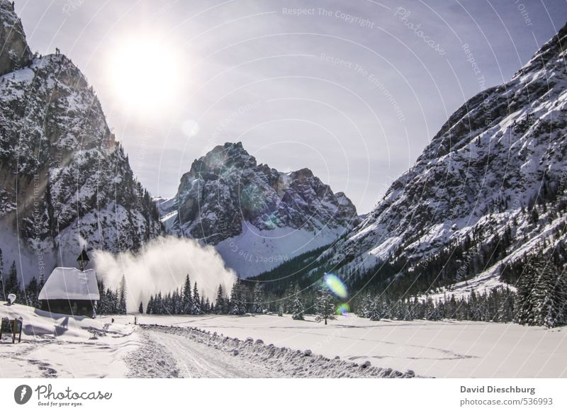avalanche Vacation & Travel Expedition Winter vacation Mountain Hiking Landscape Sky Beautiful weather Tree Rock Alps Blue Black White Avalanche Hut Fir tree