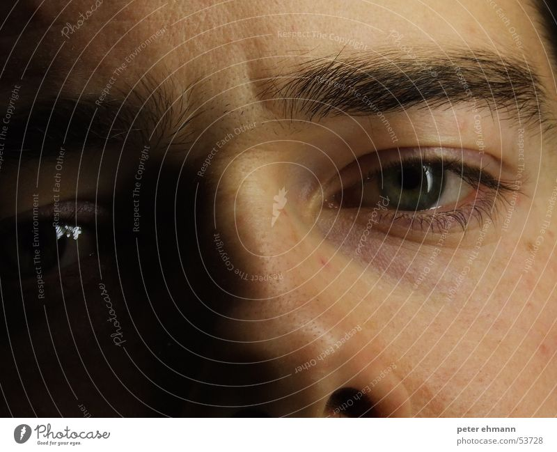 Staring at you Eyebrow Forehead Think Dream Looking Portrait photograph Motionless Face Eyes eye nose thinking Style skin Wrinkles Detail Shadow ponder