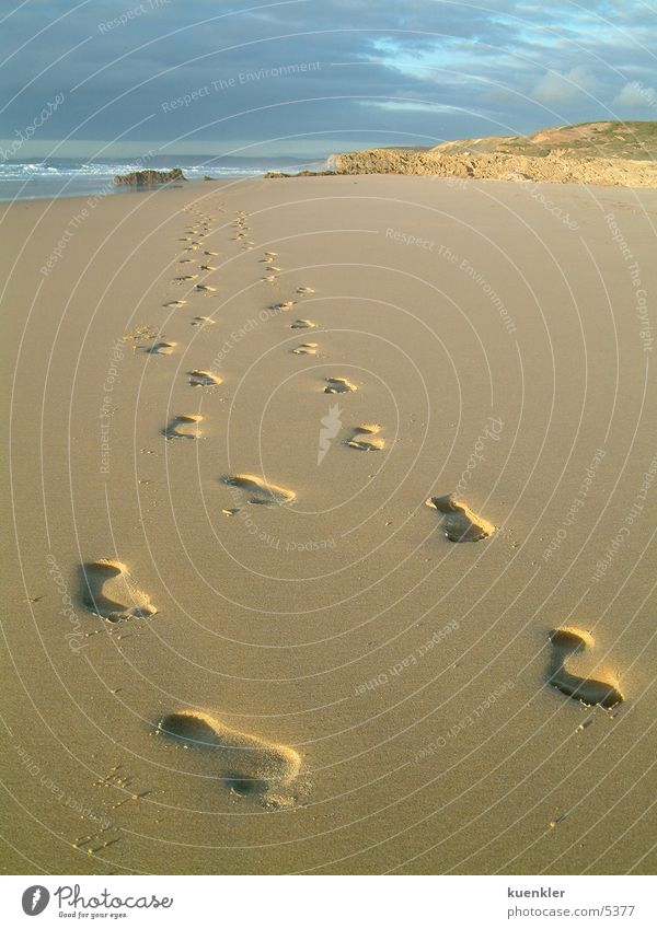 Water Ocean Tracks Beach Feet Sand Footprint
