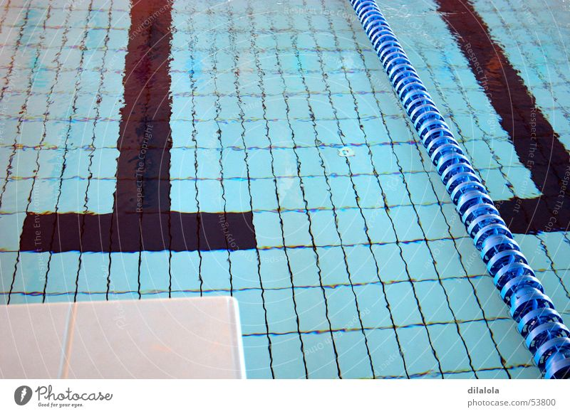 piscina Swimming pool sports swimming the olympic games blue water to swim Swimming & Bathing