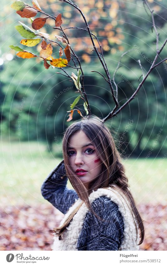leaf antlers Feminine Young woman Youth (Young adults) 1 Human being 18 - 30 years Adults Observe Antlers Forest Deer Pelt Autumn Branch Twig Animal