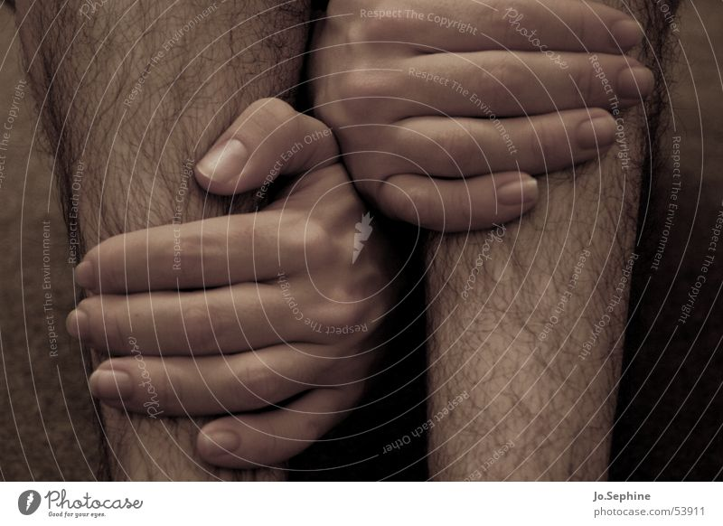 Human being Man Hand Adults Legs Skin Hair Touch To hold on Outbreak Between Encompass