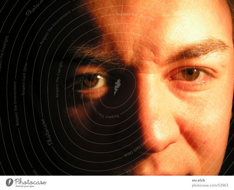 Man Face Eyes Warmth Brown Skin Masculine Blaze Nose Gold Physics Long Wrinkles Eyelash Eyebrow