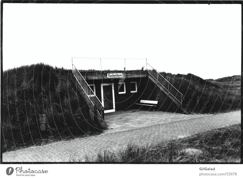 White Black Loneliness Grass Lanes & trails Landscape Stairs Toilet Beach dune