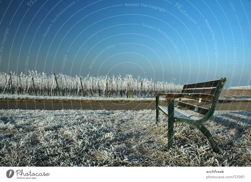 A morning in Baden Hoar frost Vineyard Meadow Park bench Calm Winegrower Tourism Sky Relaxation Germany Bench Frost Mountain Sit Swimming & Bathing Landscape