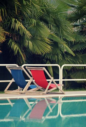 Two places left Vacation & Travel Summer Summer vacation Sun Sunbathing Swimming & Bathing Swimming pool Palm tree Deckchair Water Relaxation Blue Green Red