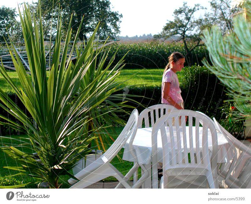 Woman Child Nature Summer Autumn Garden Chair Palm tree Photographic technology Indian Summer Maize field